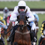 Baylis & Harding Affordable Luxury Handicap Chase Runners, Tips & Betting Odds