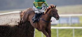 Rewards4Racing Novices' Handicap Chase Runners, Tips & Odds