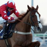 Champion Chase Racecard, Runners, Tips & Betting Odds