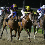 Wolverhampton Betting Tips