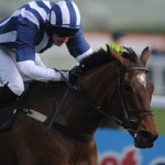 2014 Crabbie's Grand National Chase Racecard, Runners, Betting Odds, Tips & Preview