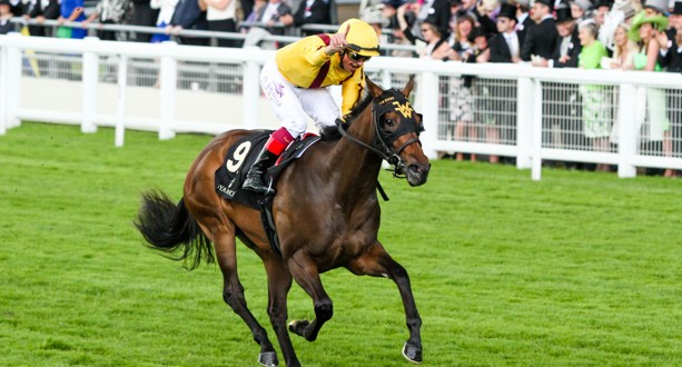 Lady Aurelia Queen Mary (1 of 1)